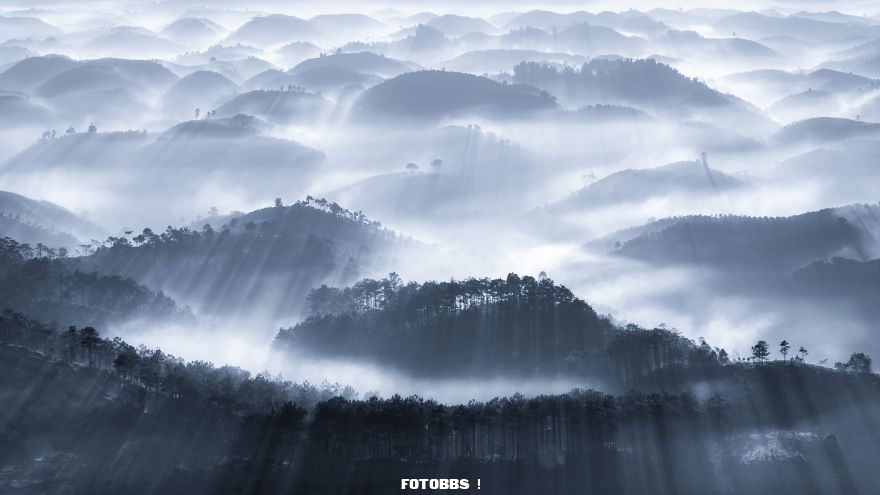 Early-fog-by-caokynhan-Vietnam-5e58e2ec05117__880.jpg
